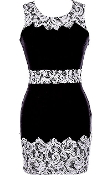 Black White Sleeveless Contrast Lace Applique Mini Bodycon Dress