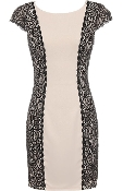 Beige Black Contrast Lace Paneled Cap Sleeve Fitted Bodycon Dress
