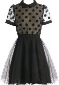 Dot Dazzler Dress
