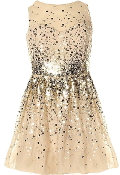 Nude Gold Sequin Mesh Sweetheart Skater Fit And Flare Party Dress